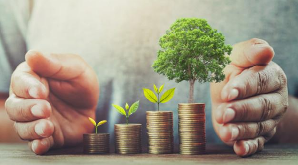 Seed Funding – Importance, Prerequisites, Steps to Raise and Equity Required