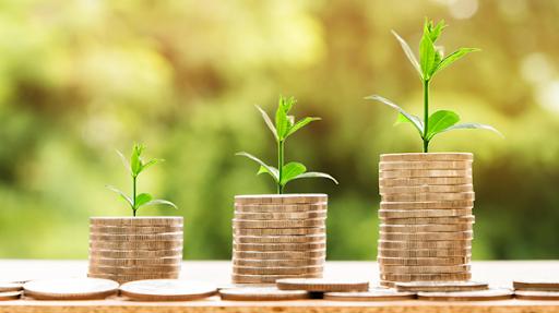 raise seed funding