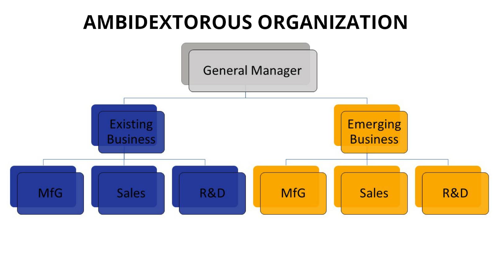 Ambidextrous organization
