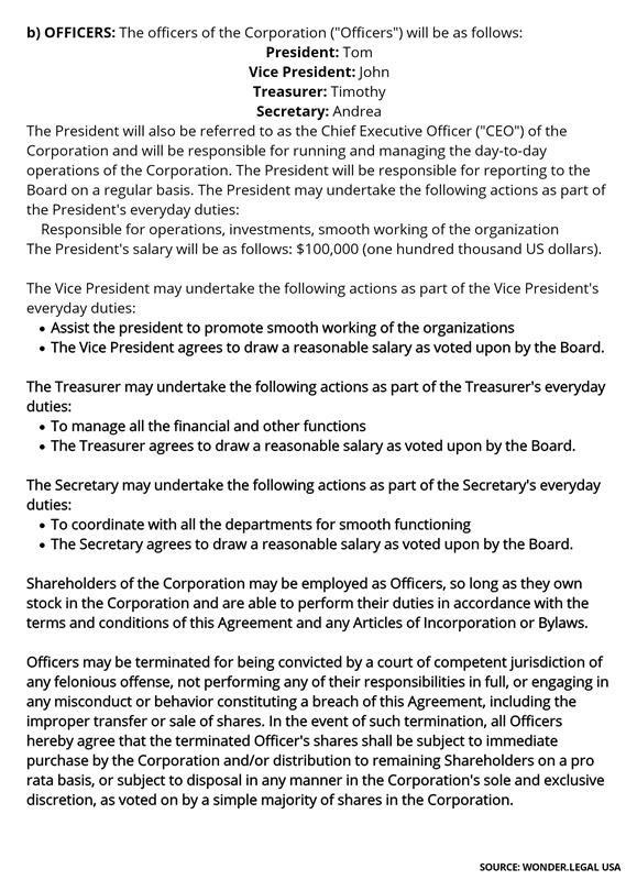 Shareholder Agreement Template-3