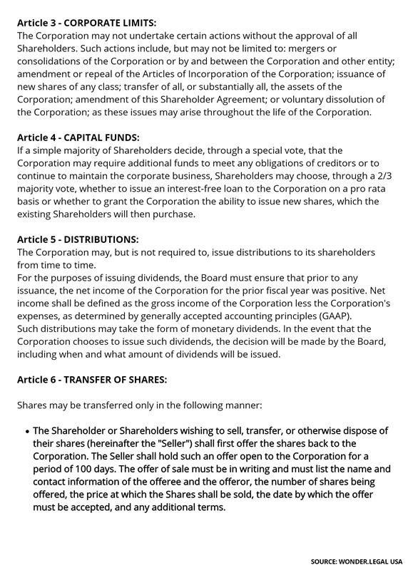 Shareholder Agreement Template-4